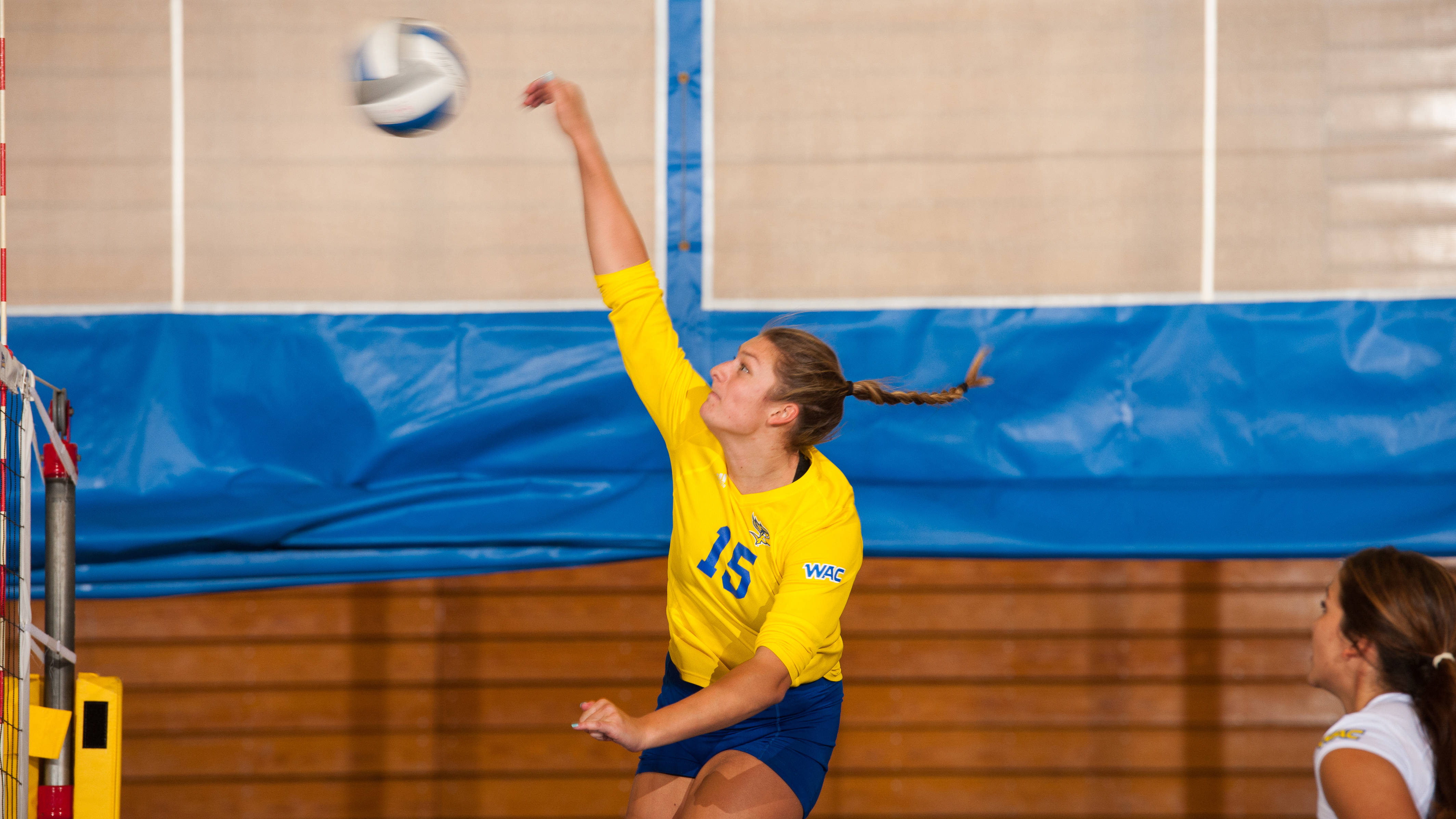 Runner Volleyball Set To Host 4 Camps In July California State University At Bakersfield Athletics